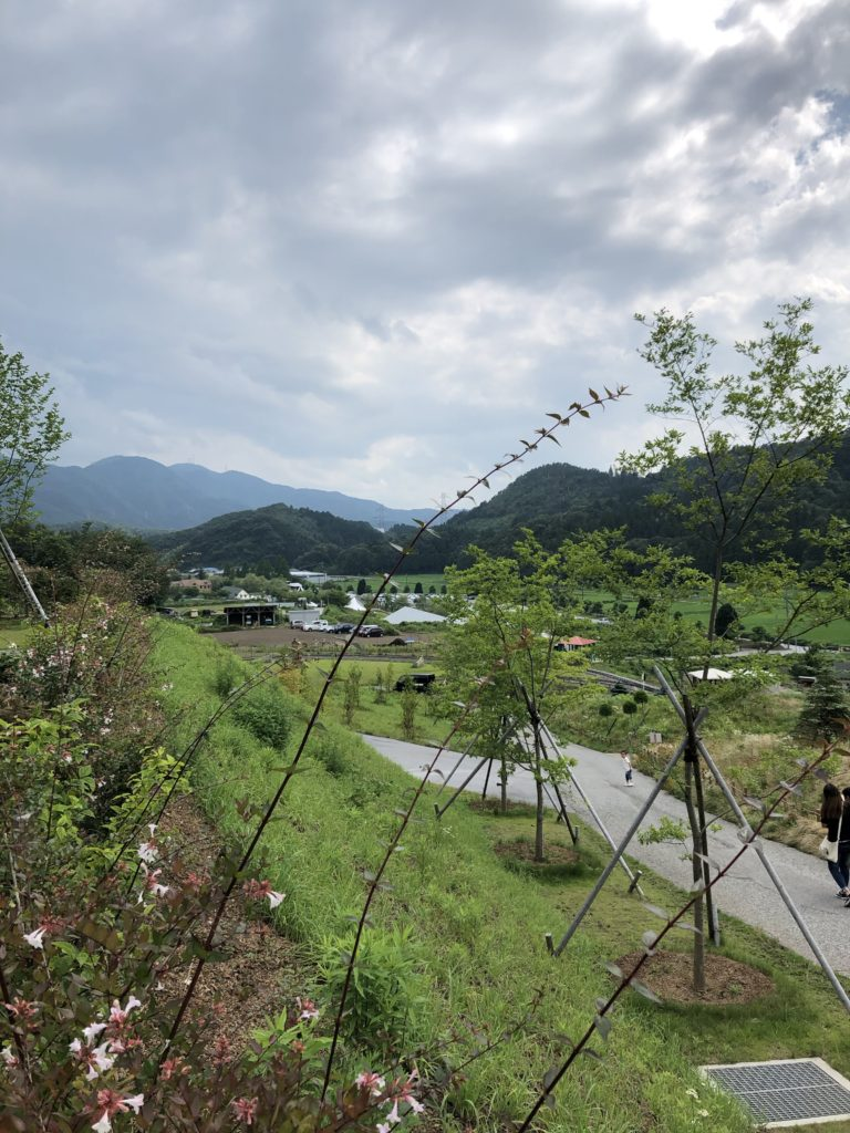 shuan-the-sheep-view