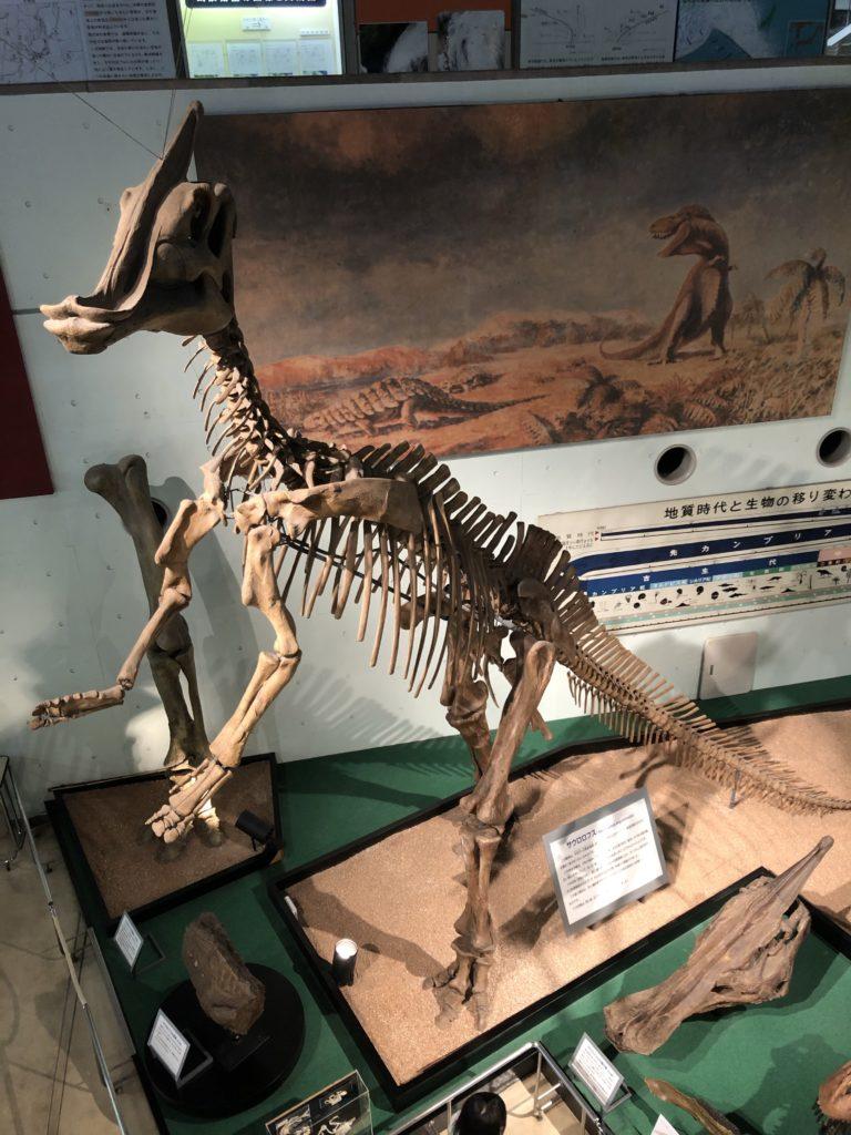 kyoto-science-dinosaur2