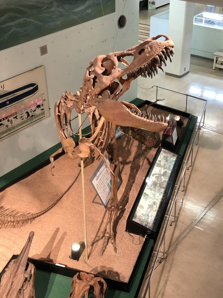 kyoto-science-dinosaur3